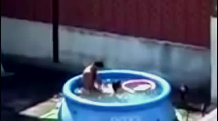 Flagrado comendo a esposa na piscina de plástico